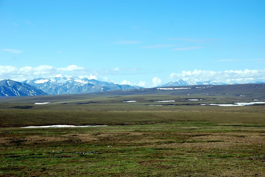 Arctic Tundra | Deadhorse, Alaska | June, 2011