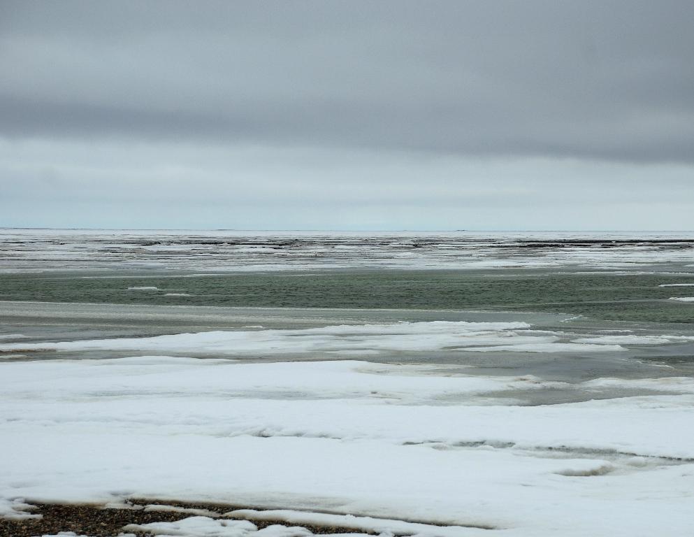 Arctic Ocean | Deadhorse, Alaska | June, 2011