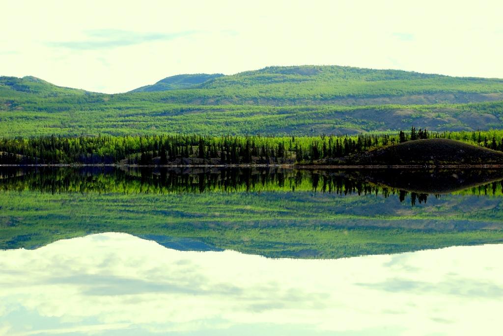 Ogilvie Mts.   Dawson City, Yukon Territory   May, 2013