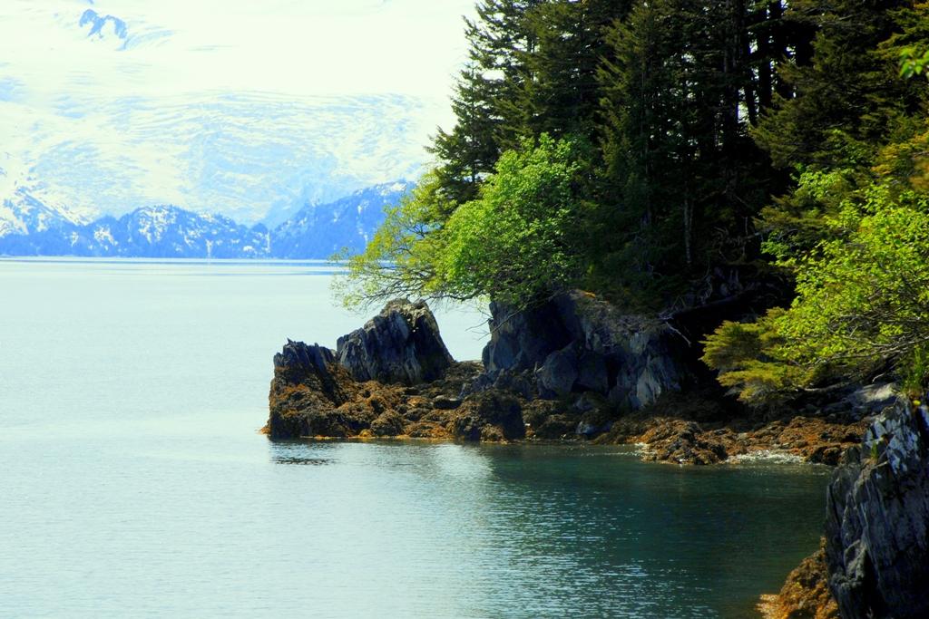 Prince William Sound | Whittier, Alaska | June, 2009