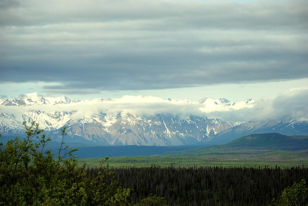 Kluane National Park | Haines Junction, Yukon Territory | June, 2011