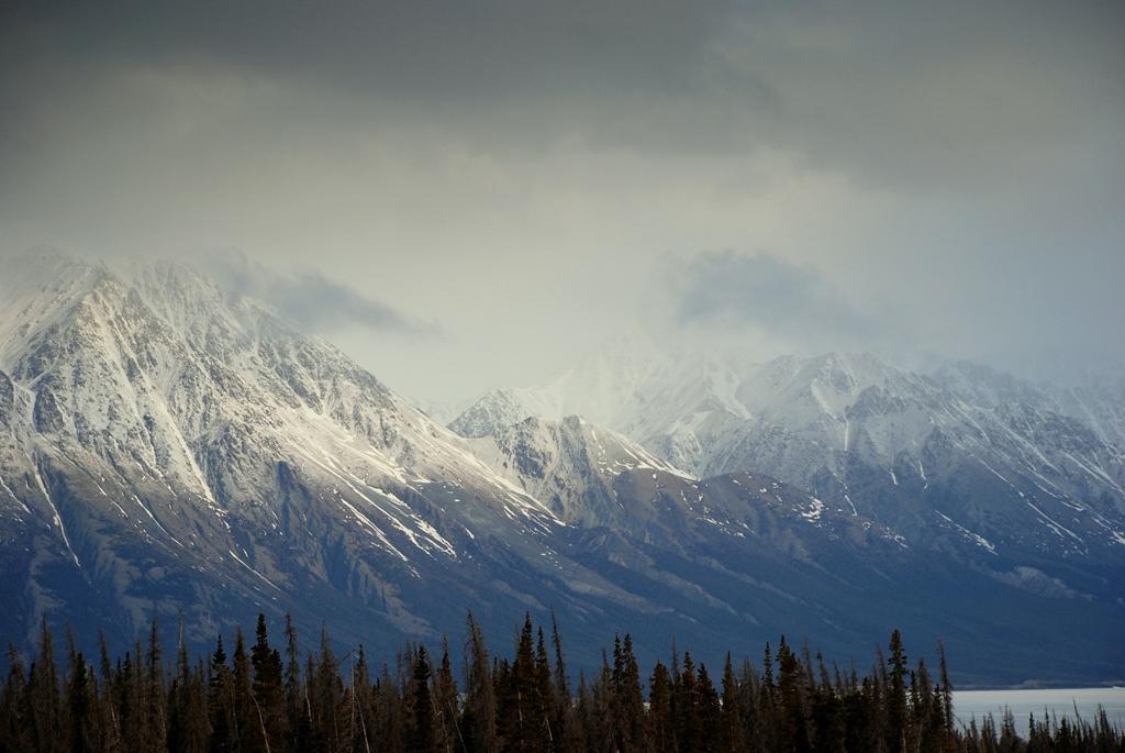 St. Elias Mts. | Haines Jct., Yukon Territory | May. 2013