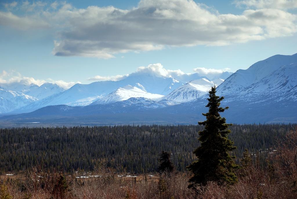 St. Elias Mts. | Haines Jct., Yukon Territory | May, 2013